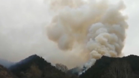 山西榆社通报森林火灾原因:村民为岳父修墓 放炮引燃荒草