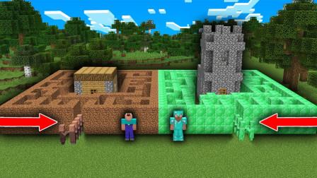 我的世界:村民竟然会挖迷宫设陷阱,结果呆呆却中招被套路了