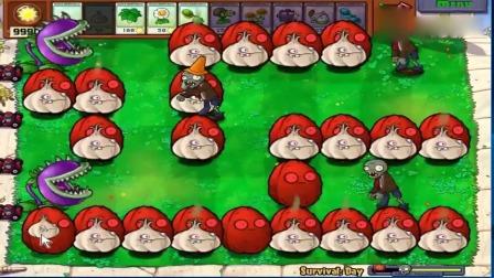 植物大战僵尸:红坚果和大蒜迷宫