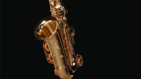 萨克斯演奏《追捕》主题曲《杜丘之歌》久别的旋律,循环播放中