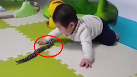 爸爸给儿子买玩具,却把宝宝吓得一脸严肃,下一秒反应把全家逗笑