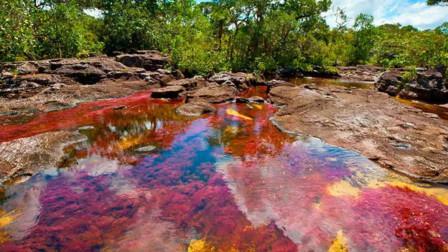 """世界""""最美""""河流,同时拥有5种颜色,当地人却称它为""""魔鬼河"""""""