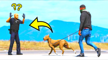 狗狗怎么回事,是不是他欺负你了,我来咬死他!