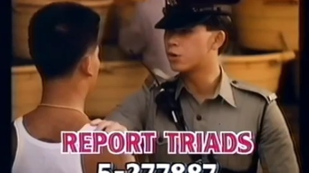 1990 fight crime committee report triads