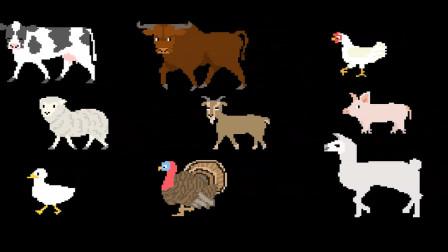 农场动物们图片学习赏析