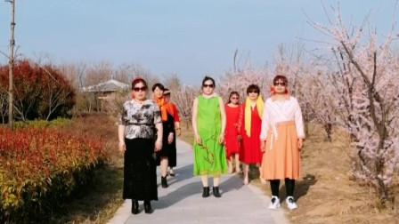 【淮北矿嫂广场舞】哈哈 我们八姐妹走《桃花运》了  花中即兴跳开心兴致高