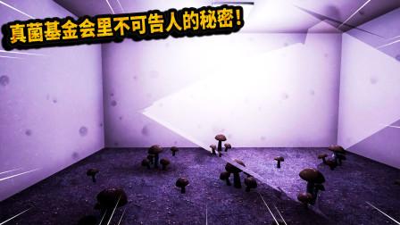 恐怖游戏:真菌基金会里不可告人的秘密!是谁袭击所有研究人员?