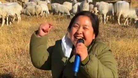 被放羊耽误的农村胖妞,翻唱《酒醉的蝴蝶》,唱得贼好听了