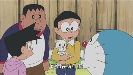 哆啦A梦:大雄认错猫了,把小白当做了静香