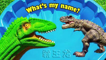 儿童玩恐龙玩具识名字,恐龙妈妈找宝贝霸王龙。