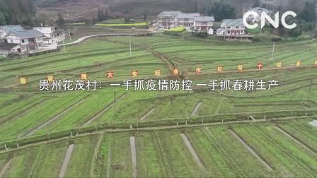 贵州花茂村: 一手抓疫情防控 一手抓春耕生产