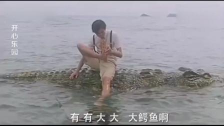厉害,把鳄鱼当石头坐,真不知道死字怎么写的