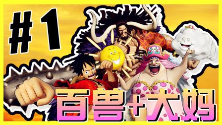 【XY小源】海贼无双4 第1期 大妈和百兽