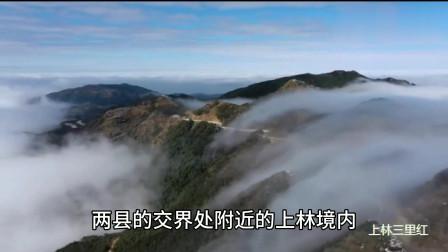 大明山,广西最大的天然大氧吧!被誉为人间仙境!