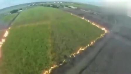 美国甘蔗进入糖厂之前,都需要放火烧一把,减少甘蔗叶方便收割