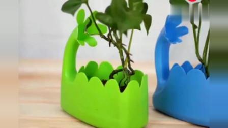 不要再买花盆了,教你用洗衣液瓶自制花盆,方法简单,快学起来吧