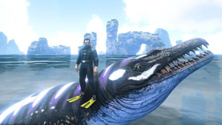 帝哥历险记:方舟创世纪12,身穿潜水服,骑龙王鲸挑战巨型岛龟