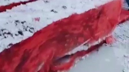 这是鱼肉还是石块?看到这锤子敲先去,我眼睛都看直了!