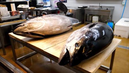 深海蓝鳍金枪鱼分解,看看大厨用的工具,两条分解毫不费力