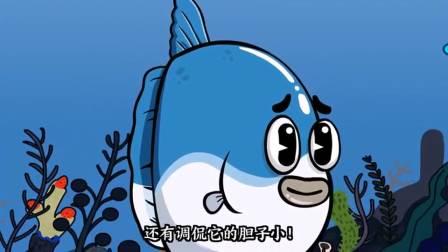 唐唐的烦恼生活:今天给大家介绍一种鱼,可爱呆萌的鱼。