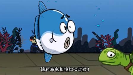 唐唐的烦恼生活:翻车鱼的来龙去脉。