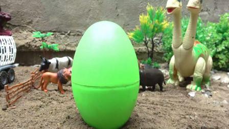 亮亮玩具恐龙和动物拆蛋找到汽车和超级飞侠玩具,婴幼儿宝宝过家家游戏视频