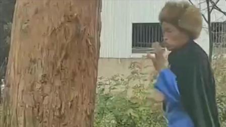 大叔闲下来就练武术,这个龙爪手看起来就比较弱,估计就是给树挠痒痒!