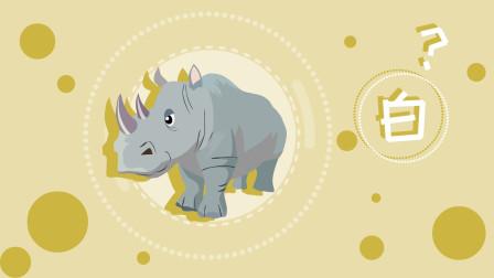 同学们,白犀牛原来并不白,为什么要叫白犀牛呢?