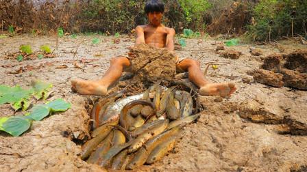 藕塘干裂了,小哥挖开泥块,发现了鱼窝,这收获太让人惊喜了!