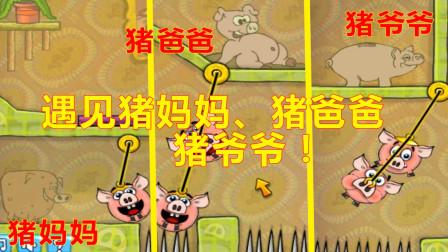 贪吃的小猪02:小猪们吃胖了就会被杀掉,可是他们还是拼命的吃