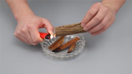 桂皮用打火机烧一烧,别提有多实用,解决很多家庭的困扰,快试试