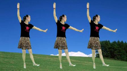 蓝莓思洁广场舞 混搭32步《梅花泪》网络流行情歌 舞蹈动作简单好看