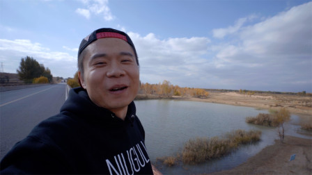 东北小伙在内蒙古沙漠中遇到了一片绿洲,嘴都要笑歪了!