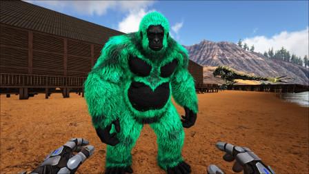 方舟生存进化:残暴时代 66 意外抓到盾牌大猩猩顺便偷了个炎龙蛋