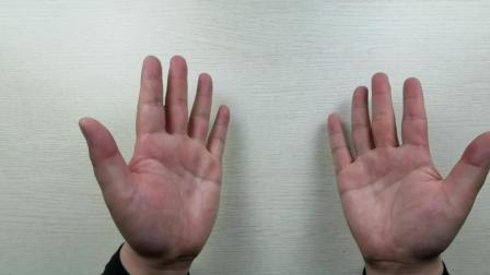 手指精细操手指上课
