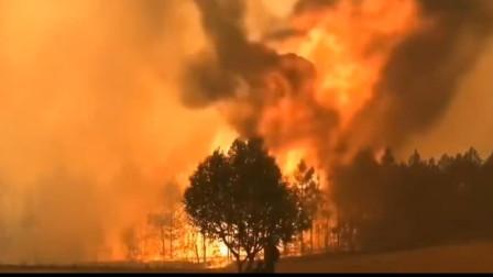 四川凉山突发森林火灾 已造成专业扑火队员19人牺牲