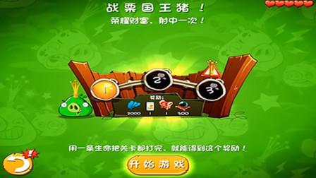 愤怒的小鸟2游戏【984】轻松过了每日赛,颤栗国王猪也不怕!