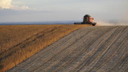 巴西大豆迎来收获季,农户指望中国市场,去年对华出口5800万吨