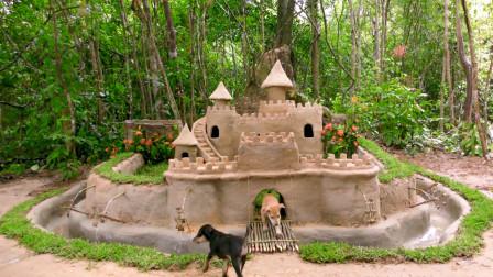 人不如狗系列,泰国小哥给狗建城堡,这也太精致了!