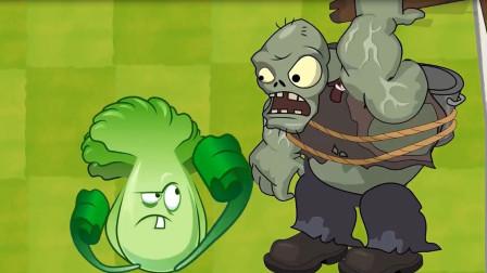 植物大战僵尸:大白菜怎么和僵尸打起来了,那拳头挥的真痛快!