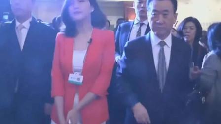 王健林的保镖再厉害也不好意思对美女下手呀,副总都没推开她