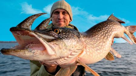 4个人类捕获的变异海洋动物,体型大、头有角,这鱼真没见过