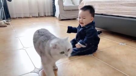 主人看见猫就哭,猫只有溜走了,猫:难道我不可爱吗