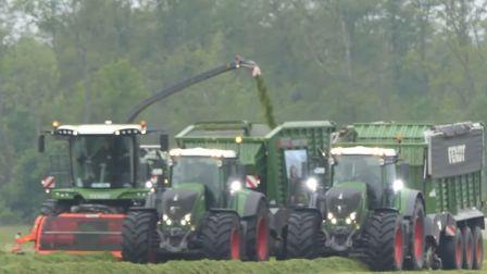 模拟农场现实版-丹麦草场收割牧草