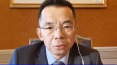 驻法大使澄清武汉领骨灰排队:除新冠肺炎外1万人因其他原因死亡