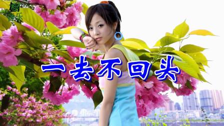 韩宝仪3首情歌《一去不回头+抹去泪水+爱在夕阳下》怀旧金曲,旋律入心,非常好听!
