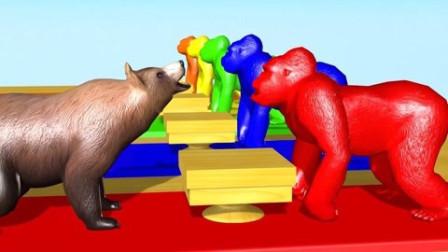 少儿启蒙教育通过大猩猩了解动物名称的颜色小动物吃冰淇淋