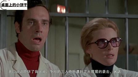 《逃离猩球》,海面意外发现神秘飞船,打开飞船后众人不淡定了