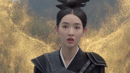 九州天空城2:风如澈被斩去金翅膀,浴火重生归来,吓呆璇玑夫人