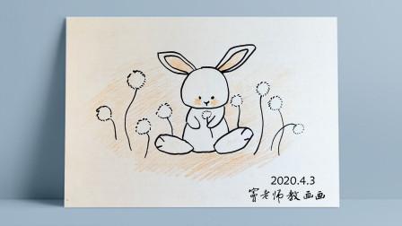 兔子窦老师教画画